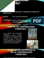 CONTABILIDAD FORESTAL.pptx