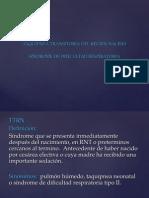 ttrn-y-sdr1