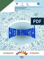 Caiet_practica.pdf