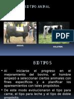 Biotipos 1.pptx
