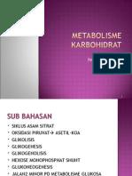 Kuliah Metabolisme Kh
