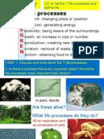 1 Life Processes and Cells Afl