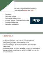 Dermatitis Vesikobulosa Kronik