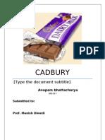 22450560 Cadbury Marketing Strategy
