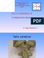 3 TALLO CEREBRAL II CONF. INTERNA.ppt
