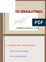 09-APARATO CIRCULATORIO