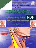 CLASEII MIOLOGIA.pdf