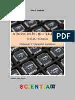 1.1-Concepte-de-baza-in-electricitate.pdf