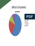 Graficos Circulares