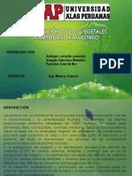 Distribución de los vegetales y métodos de muestreo.pdf