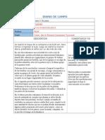 Diarios de Campo 10