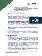 TDR Puntos Criticos Carretera SM-102 Cuñumbuqui - San Jose de Sisa.docx