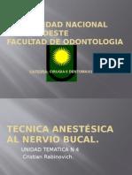 Anestesia Al Nervio Bucal