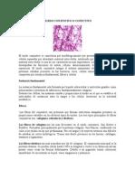 tejido conectivo y cartilaginoso