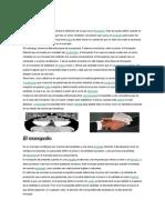 Monografia Microeconomia - Copia