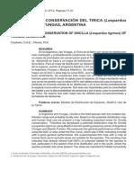 DISTRIBUCIÓN Y CONSERVACIÓN DEL TIRICA (Leopardus tigrinus) EN LAS YUNGAS, ARGENTINA