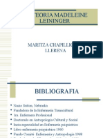 teoriamadeleineleininger-100911180210-phpapp02