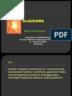 Slide Mata Glaukoma