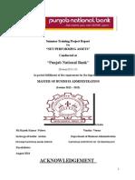 Summer Tranning Report (NPA)