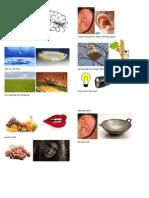 Latihan Peribahasa Format PT3