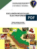 ELECTROFORESIS 29-11-13