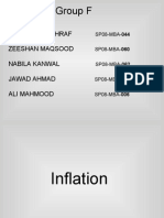 Inflation Project Final