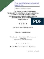 Tesis Eliminacion de Nutrientes Para El Tratamiento Biologico de Agua Residual