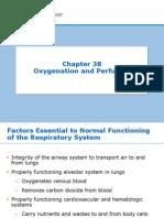 Week 10- Ch. 38- Oxygenation
