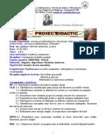 (500373156) Proiect c.l.r. Final Grad i