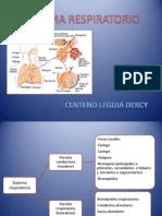 Sistema Respiratorio Dcl