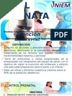 Exposicion Control Prenatal