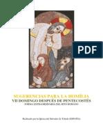 SUGERENCIAS PARA LA HOMILÍA. VII Domingo Despues de Pentecostes