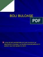 Curs 4 - BoliBuloase1-Rezumat
