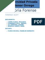auditoria forense Upao.docx