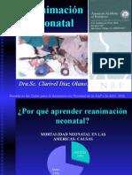2010 RCP Neonatal NUEVO.clarivel