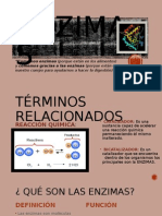 Grupo 3 - Enzimas (Huamán Pérez)
