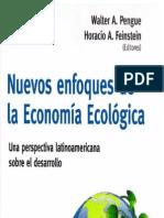 Nuevos Enfoques de La Economía Ecológica (W. Pengue - H. Feinstein - 2013)