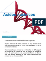 acidosnucleicos-110404124902-phpapp02.pptx