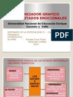 ORGANIZADOR GRAFICO haydee mapa semantico.pptx