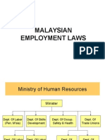 Optional Msian Law