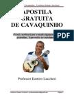 Apostila Cavaco - Professor Damiro Lucchesi