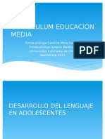Clase 5 Curriculum Educacion Media