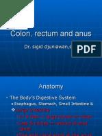 Colon, Rectum and Anus-dr. Sigit