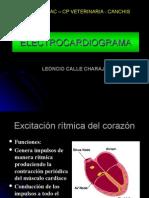 electrocardiograma-
