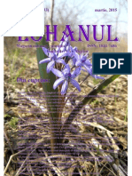 Lohanul_Nr_33.pdf