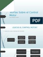 Teorías Sobre El Control Motor