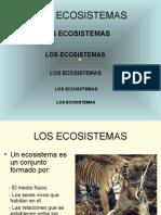 Los Ecosistemas