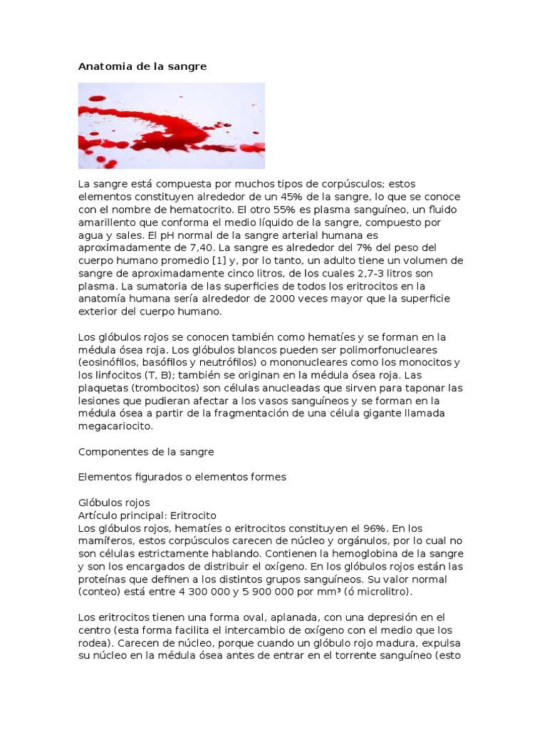 Anatomia de la sangre humana.docx