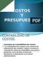 Información de Costos y Presupuestos