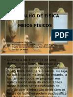 MEIOS FÍSICOS